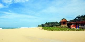 Pantai-Drini-Yogyakarta