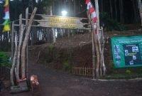 Gapura Masuk Hutan Pinus Pengger Dlinggo